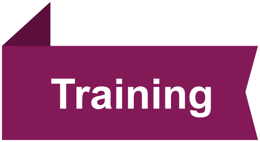 Training – Irish Exporters