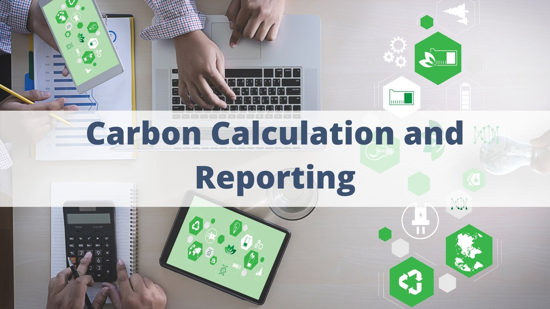 Sustainable Supply Chains Training: Carbon Calculation and Reporting