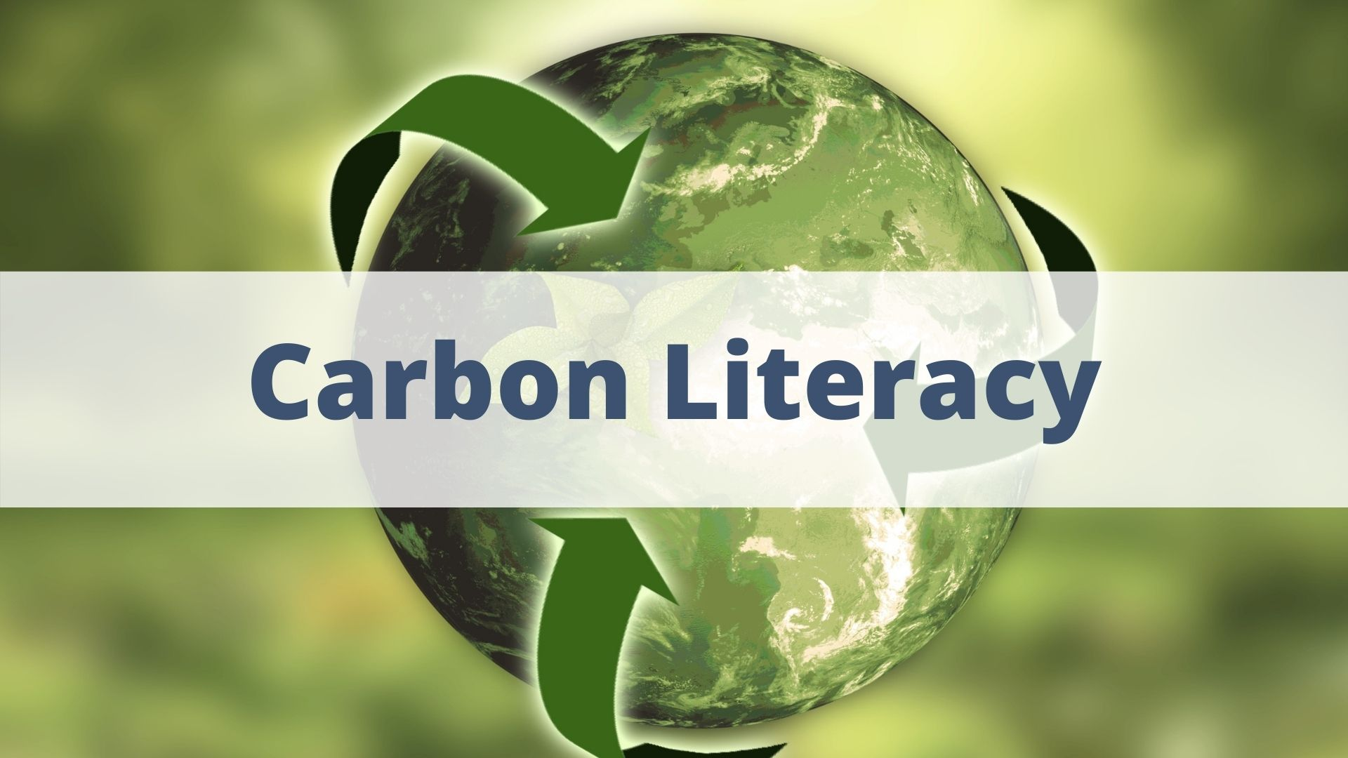 Sustainable Supply Chains Training: Carbon Literacy